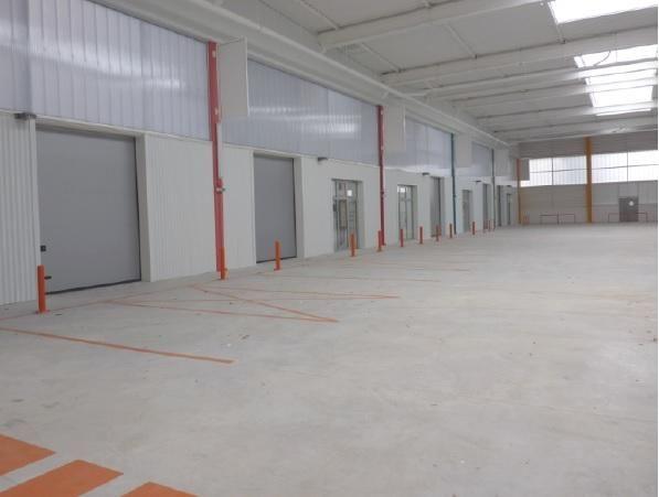 Local d'activités de 292 m², Palaiseau (91120)